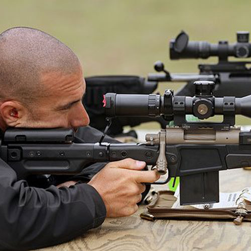 Precision and scoped rifle